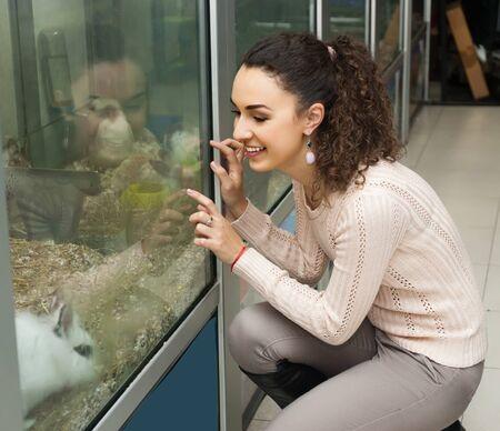 petshop: Ordinary female customer watching Blanc de Hotot rabbit in petshop Stock Photo