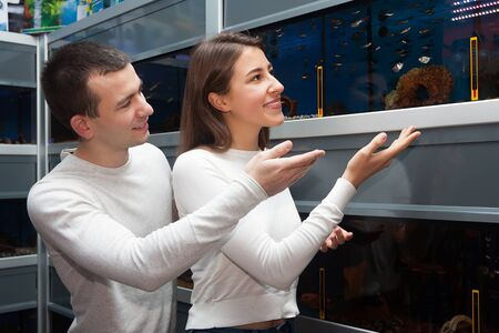 aquarian: Ordinary customers watching tropical fish in petshop Stock Photo