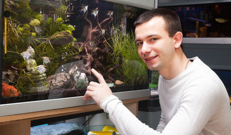 aquarian: Portrait of  man sitting near the aquarium and selecting tropical fish in petstore Stock Photo