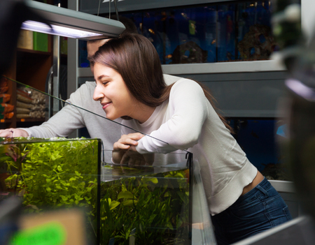 aquarian: young couple staying near the aquariumand selecting tropical fish in petshop Stock Photo