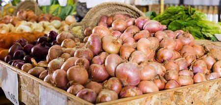 spice: Mature bulb onion on market counter