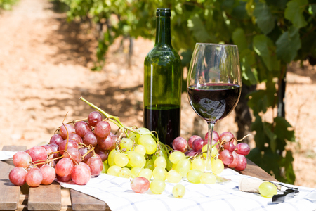 still life with glass of red wine and grapes in field Stock Photo