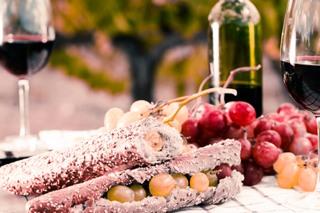sandwich with green grapes on table in vineyard