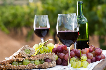 appetizing sandwich with green grapes on table in vineyard