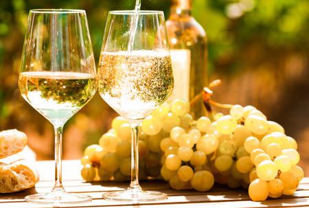 glass of dry White wine ripe grapes and bread on table in vineyard