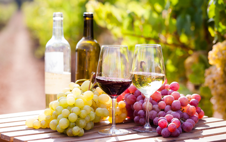 still life with glasses of red and white wine and grapes in field Stock Photo