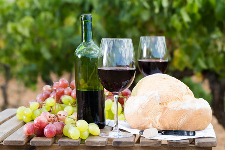 still life with glass of red wine grapes and bread on table in field