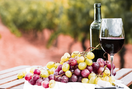 still life with glass of red wine and grapes in field Imagens