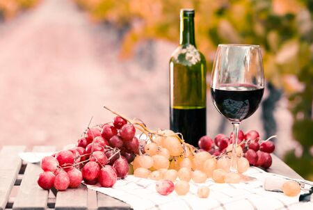 still life with glass of red wine and grapes in field