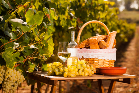 still life with glass of dry white wine grapes and picnic basket on table in field