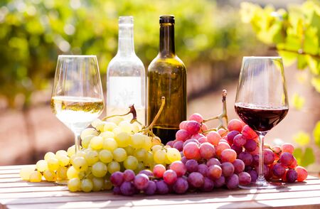 Bodegón con vasos de vino tinto y blanco y uvas en el campo