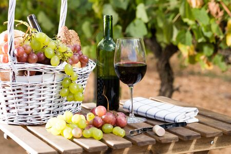 still life with glass of red wine grapes and picnic basket on table in field