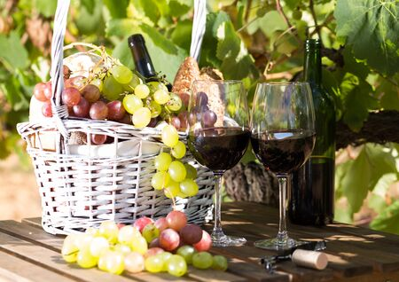 glass of red wine ripe grapes and picnic basket on table in vineyard