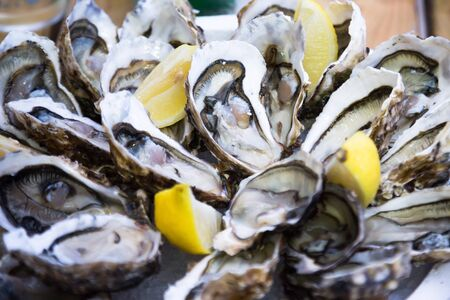 Fresh delicious oysters with lemon on the plate