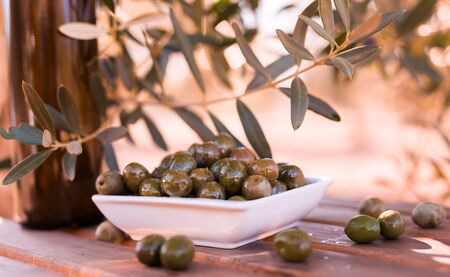 green olives on table in an olive grove