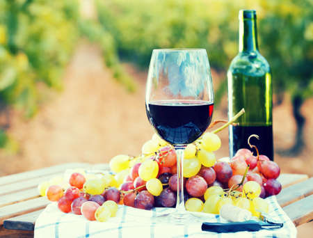 glass of red wine and ripe grapes on table in vineyard