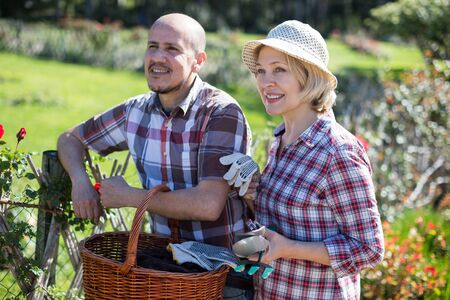 Elderly woman and man look after roses in the garden