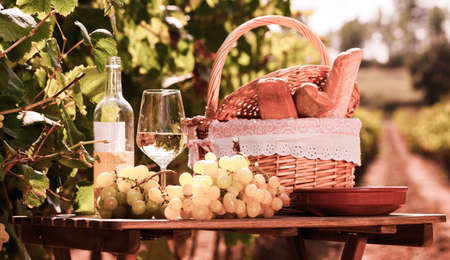 glass of dry white wine ripe grapes and picnic basket on table in vineyard