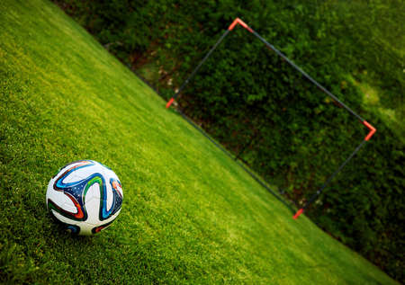 soccer ball on the grass field in front of a goal post 免版税图像
