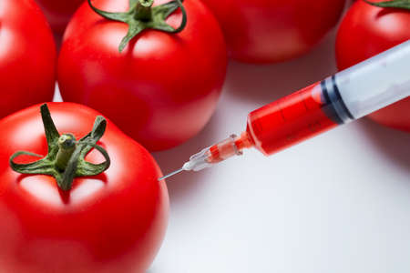 Close-up shot of a syringe injecting a red liquid to fresh red tomatoes. Concept of genetic modification.