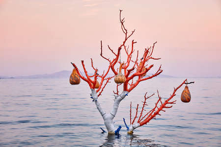 Decorative handmade calabash gourd (water pumpkin) lamps hanging on a tree in the sea at sunrise