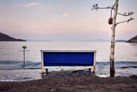 Vintage empty metal bench in the sea between an old tree and a table at sunrise Foto de archivo