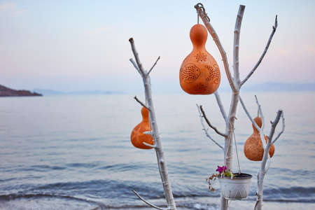 Decorative handmade calabash gourd (water pumpkin) lamps hanging on a white tree in front of a calm sea background at sunrise