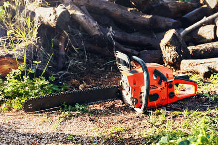 Gasoline powered professional chainsaw in front of a pile of wood logs Banco de Imagens