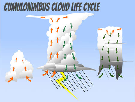 Cumulus, Mature, and dissipation phase of Cumulonimbus cloud