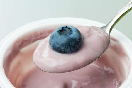biologic: close-up of spoon of yogurt with blueberries