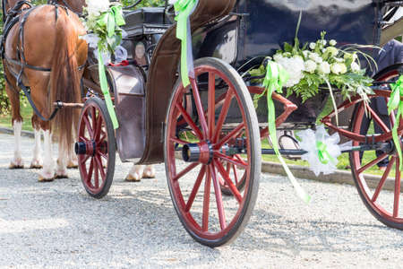 horse-drawn carriage with wedding decorations during a wedding