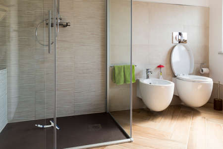 house ware: close up of Bidet and wc in the bathroom