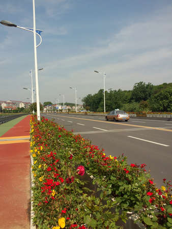flower beds: Roadside flower beds