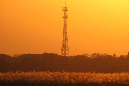 Twilight Tower Zdjęcie Seryjne