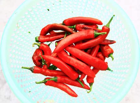 Rode peper Stockfoto