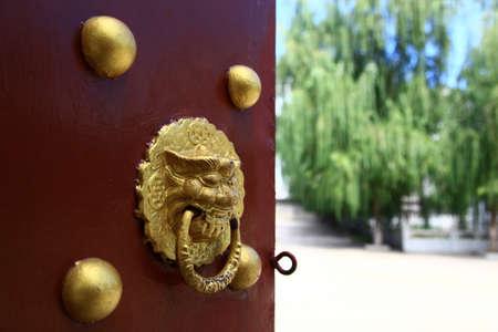 knocker: lion knocker on the gate