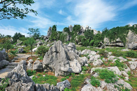travel features: Rock forest Stock Photo
