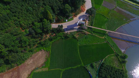farmland: farmland scenery