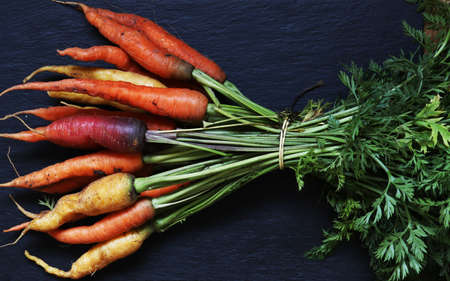 Photography of a bunch of colorful carrots tied like market gardeners for food illustrations