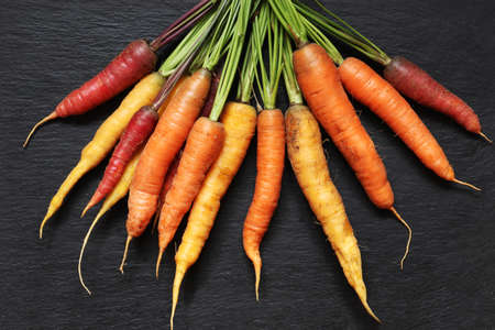 Photography of a bunch of colorful carrots on slate background for food illustrations