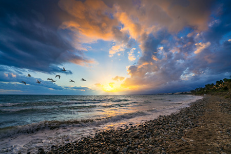 Dramatic sunset from a beach with Marbella, Costa del Sol, Spain in the distance. Birds flying in foreground