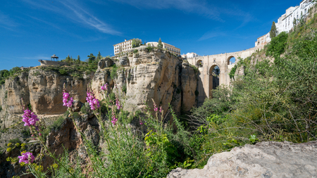 Ronda Panorama with floral countryside foreground showing the Parador,  Puente Nuevo and El Tajo Gorge against a bright blue sky in the City of Ronda in Spain's Malaga province, Andalusia