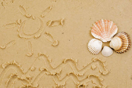 scallop shell: Sun and sea drawed on sand witch shells Stock Photo