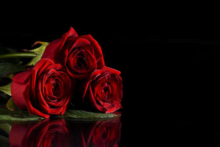 Beautiful red roses on black background with reflection photo