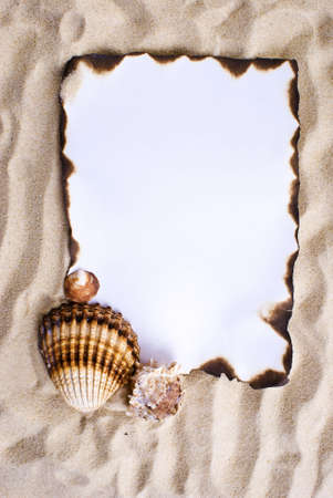 vellum: Burned paper on the sand with shells