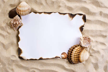 marauder: Burned paper on the sand with shells