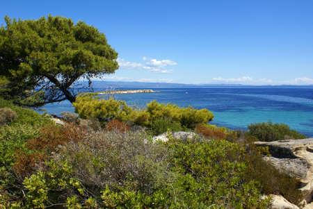 sithonia: La bellissima costa di Halkidiki in Vourvourou (Sithonia). Archivio Fotografico