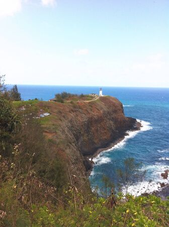 Bird sanctuary located at a lighthouse off the coast of Kauai Hawaii.
