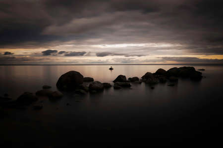 Lonely bird by the sea.