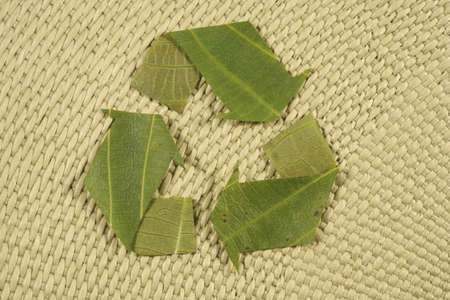 natureal: recycling symbol, recycled symbol made from leaves on natureal background, Mobius Loop